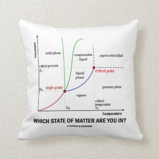 Which State Of Matter Are You In? (Chemistry) Throw Pillow