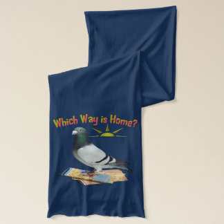 Which Way is Home? Fun Pigeon Scarf