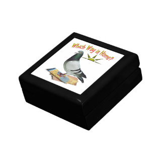 Which Way is Home? Pigeon Art Gift Box