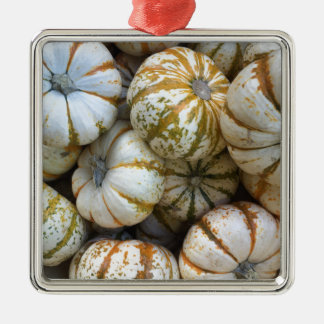 Whimsical Pumpkins Silver-Colored Square Ornament