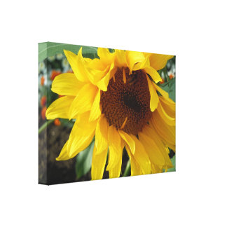 Whimsical Sunflower Canvas Print