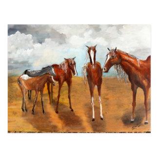 Whimsy Mustangs Postcard