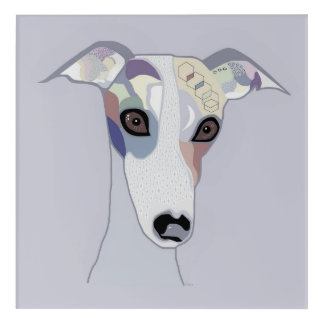 Whippet in Denim Colors Acrylic Print