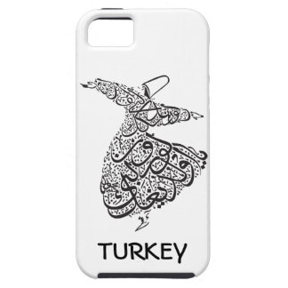 Whirling Dervish iPhone 5 Cases