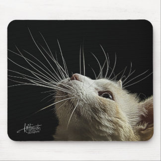 Whiskers!!! Mouse Pad