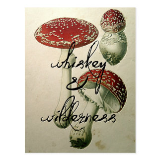 Whiskey & Wilderness Mushroom Postcard