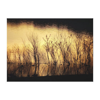 Whispering Sunset Canvas Print