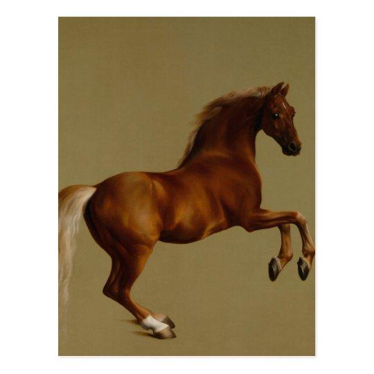 Whistlejacket Race Horse by George Stubbs Postcard