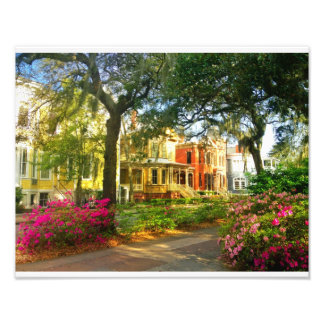 Whitaker Street In March Photo Print