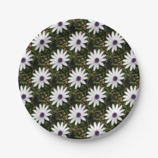 White African Daisy 7 Inch Paper Plate