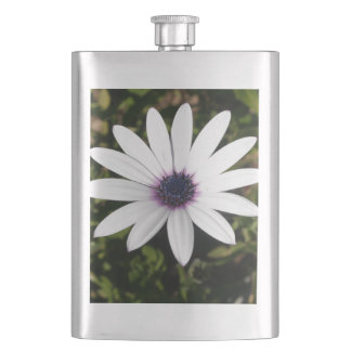 White African Daisy Hip Flask