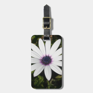 White African Daisy Luggage Tag