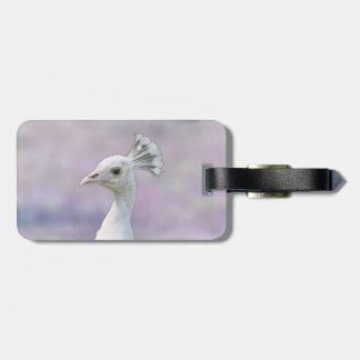White albino peacock against purple back bag tag
