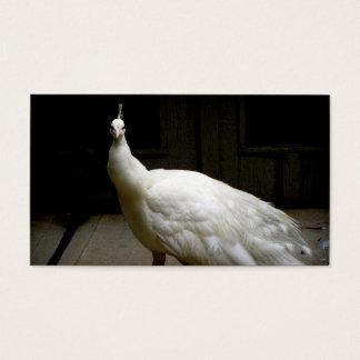 White Albino Peacock Business Card
