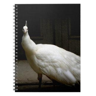 White Albino Peacock Notebook