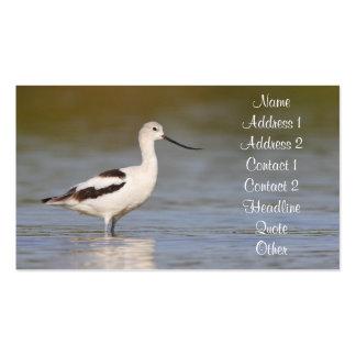 white american avocet business card