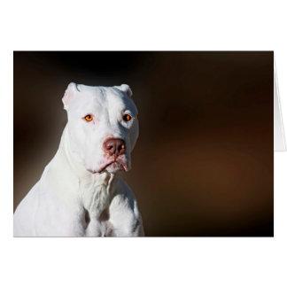 White American Pitbull Terrier Rescue Dog Card