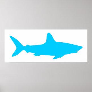 White and Aqua Blue Shark Poster