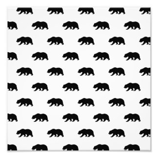 White and Black Grizzly Bear Pattern Photo Print