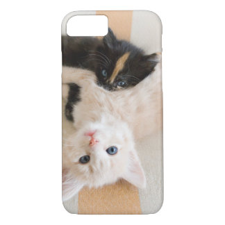 White And Black Kitten Lying On Sofa iPhone 7 Case