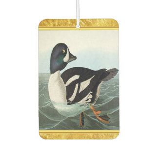 White and Black mallard ducks swimming in water Car Air Freshener