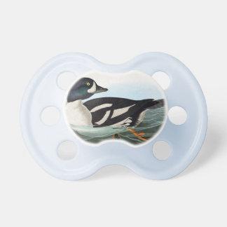 White and Black mallard ducks swimming in water Pacifier