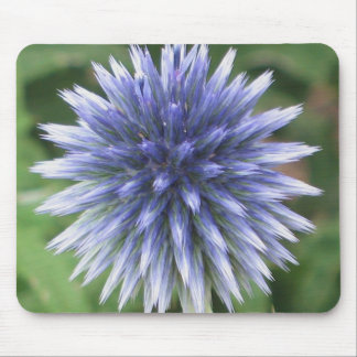 White and Blue Globe Thistle Mousepad