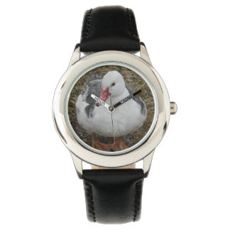 White and Blue Pied Muscovy Duck Watch