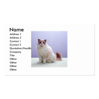 White and Brown Cat Business Card