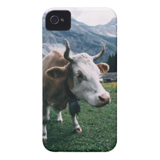 White and Brown Cow Case-Mate iPhone 4 Cases