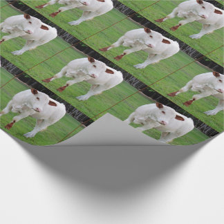 White and Brown Cow Wrapping Paper