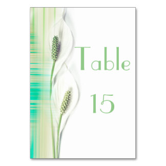 White and Green Peace Lily with Striped design Card