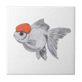 White and Orange Oranda Goldfish Aquarium Pet Fish Tile