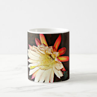 White and Pink Cactus Bloom Coffee Cup
