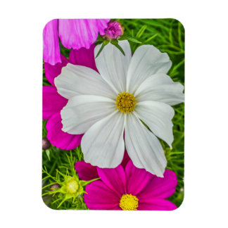 White and pink flowers fridge magnet