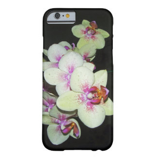 white and pink orchid barely there iPhone 6 case
