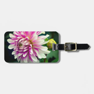White And Pink Striped Dahlia And Bud Luggage Tag