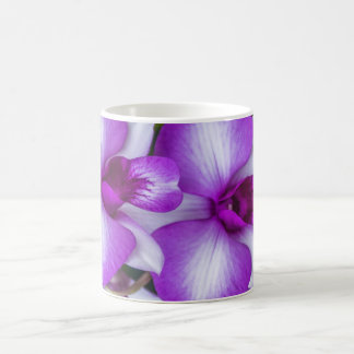 White and purple orchids mug