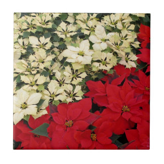 White and Red Poinsettias I Holiday Floral Ceramic Tile