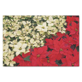 White and Red Poinsettias I Holiday Floral Tissue Paper