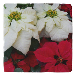White and Red Poinsettias II Christmas Holiday Trivet