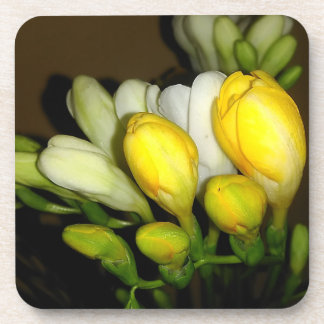 White And Yellow Freesia Flower Buds Coaster