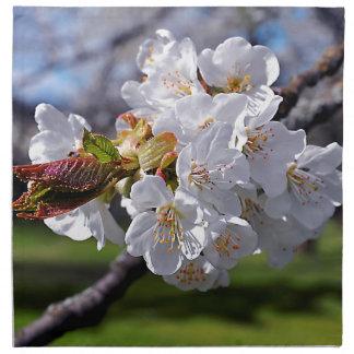 White apple blossoms in spring napkin