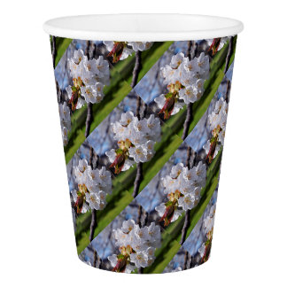 White apple blossoms in spring paper cup