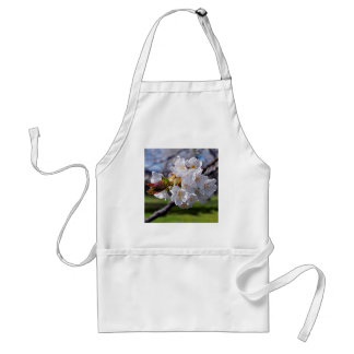 White apple blossoms in spring standard apron
