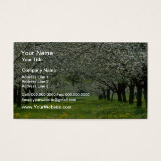 white Apple trees flowers Business Card