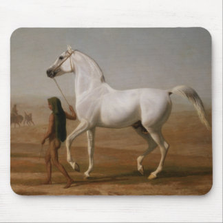 White Arab stallion Mouse Pad