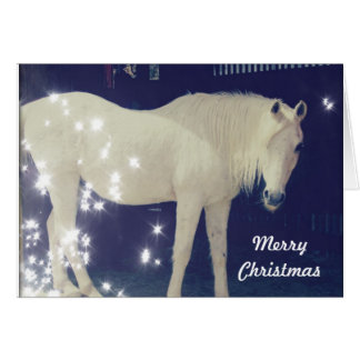 White Arabian Horse Christmas Card