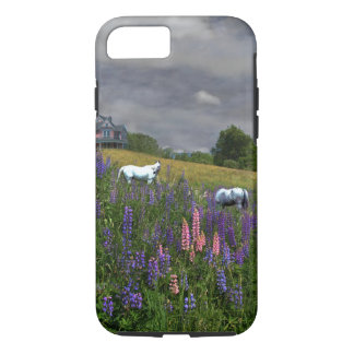 White Arabian Horses and Lupine Phone Case