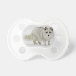 White Arctic Fox Blends Into The Snow Pacifier